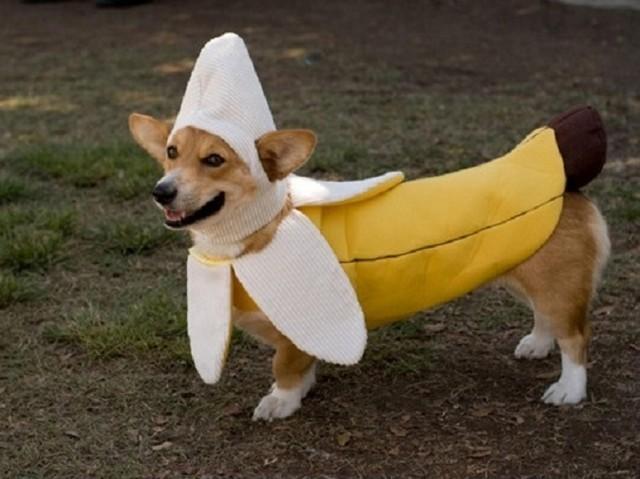 Banán?